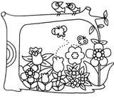 Imprimer le coloriage : Nature, numéro 423a2b36