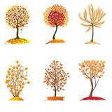 Imprimer le dessin en couleurs : Arbres, numéro 11835