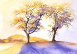 Imprimer le dessin en couleurs : Arbres, numéro 300844