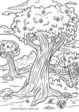 Imprimer le coloriage : Arbres, numéro c2ed20ae