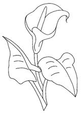 Imprimer le coloriage : Fleurs, numéro 129201