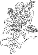Imprimer le coloriage : Fleurs, numéro 242348