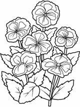 Imprimer le coloriage : Fleurs, numéro 3133