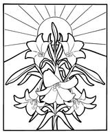 Imprimer le coloriage : Fleurs, numéro 457496