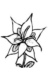 Imprimer le coloriage : Fleurs, numéro 5215