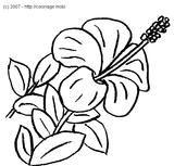 Imprimer le coloriage : Fleurs, numéro 5216