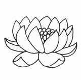 Imprimer le coloriage : Fleurs, numéro 5218