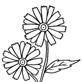 Imprimer le coloriage : Fleurs, numéro 759880