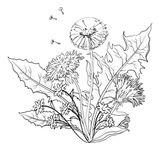 Imprimer le coloriage : Fleurs, numéro aec3e974