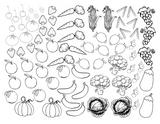 Imprimer le coloriage : Fruits, numéro 37a64663