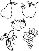 Imprimer le coloriage : Fruits numéro 469204