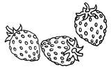 Imprimer le coloriage : Fruits numéro 469206