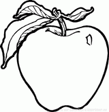 Imprimer le coloriage : Fruits numéro 496348