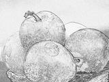 Imprimer le coloriage : Prune, numéro 56452
