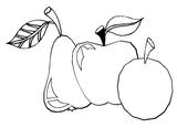 Imprimer le coloriage : Prune, numéro 56495