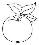 Imprimer le coloriage : Légumes, numéro 13103