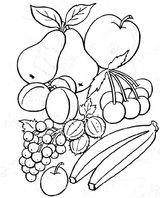 Imprimer le coloriage : Légumes, numéro 13108
