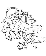 Imprimer le coloriage : Légumes, numéro 13522