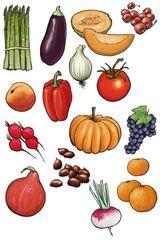 Imprimer le dessin en couleurs : Légumes, numéro 13548