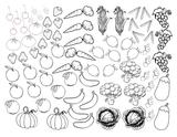 Imprimer le coloriage : Légumes, numéro 1f66dfa2