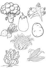 Imprimer le coloriage : Légumes, numéro 341901