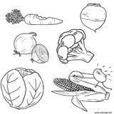 Imprimer le coloriage : Légumes, numéro 6ed045cf