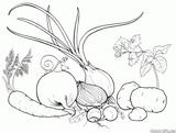 Imprimer le coloriage : Légumes, numéro 9b82a9b9