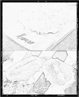 Imprimer le coloriage : Concombre, numéro 28300