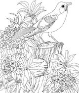 Imprimer le coloriage : Nature, numéro ff8ca15a