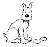 Imprimer le coloriage : Tintin, numéro 130293