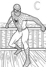 Imprimer le coloriage : Spiderman, numéro 141703