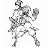 Imprimer le coloriage : Spiderman, numéro 16506