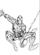 Imprimer le coloriage : Spiderman, numéro 16508