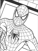 Imprimer le coloriage : Spiderman, numéro 18298