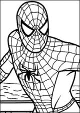 Imprimer le coloriage : Spiderman, numéro 4557