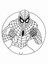 Imprimer le coloriage : Spiderman, numéro 672602