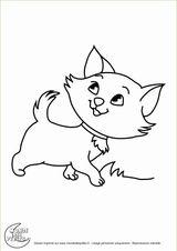 Imprimer le coloriage : Le Chat potté, numéro 68b9aa4