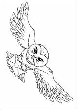 Imprimer le coloriage : Harry Potter, numéro 16691