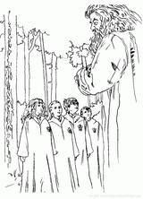 Imprimer le coloriage : Harry Potter, numéro 2544b4ba