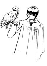 Imprimer le coloriage : Harry Potter, numéro 4256