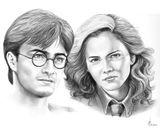 Imprimer le coloriage : Harry Potter, numéro 443600