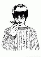 Imprimer le coloriage : Harry Potter, numéro 97be685f