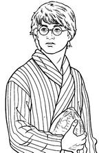 Imprimer le coloriage : Harry Potter, numéro f5f666d9