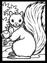 Imprimer le coloriage : Star Fox, numéro 5045