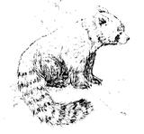 Imprimer le coloriage : Petit Ours brun, numéro 5020