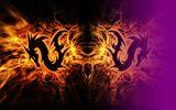 Imprimer le dessin en couleurs : Dragon, numéro 692374