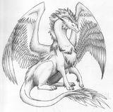 Imprimer le coloriage : Dragon, numéro 754965