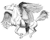 Imprimer le coloriage : Licorne, numéro 16861