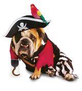 Imprimer le dessin en couleurs : Pirate, numéro 158242