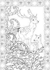 Imprimer le coloriage : Personnages féeriques, numéro c32efe97